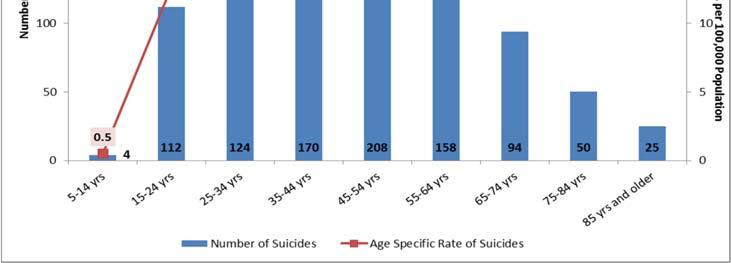 Age Trends Generally the number of suicides and the suicide rate in Tennessee increase with age through the 45-54 age group, with their suicide rate more than five