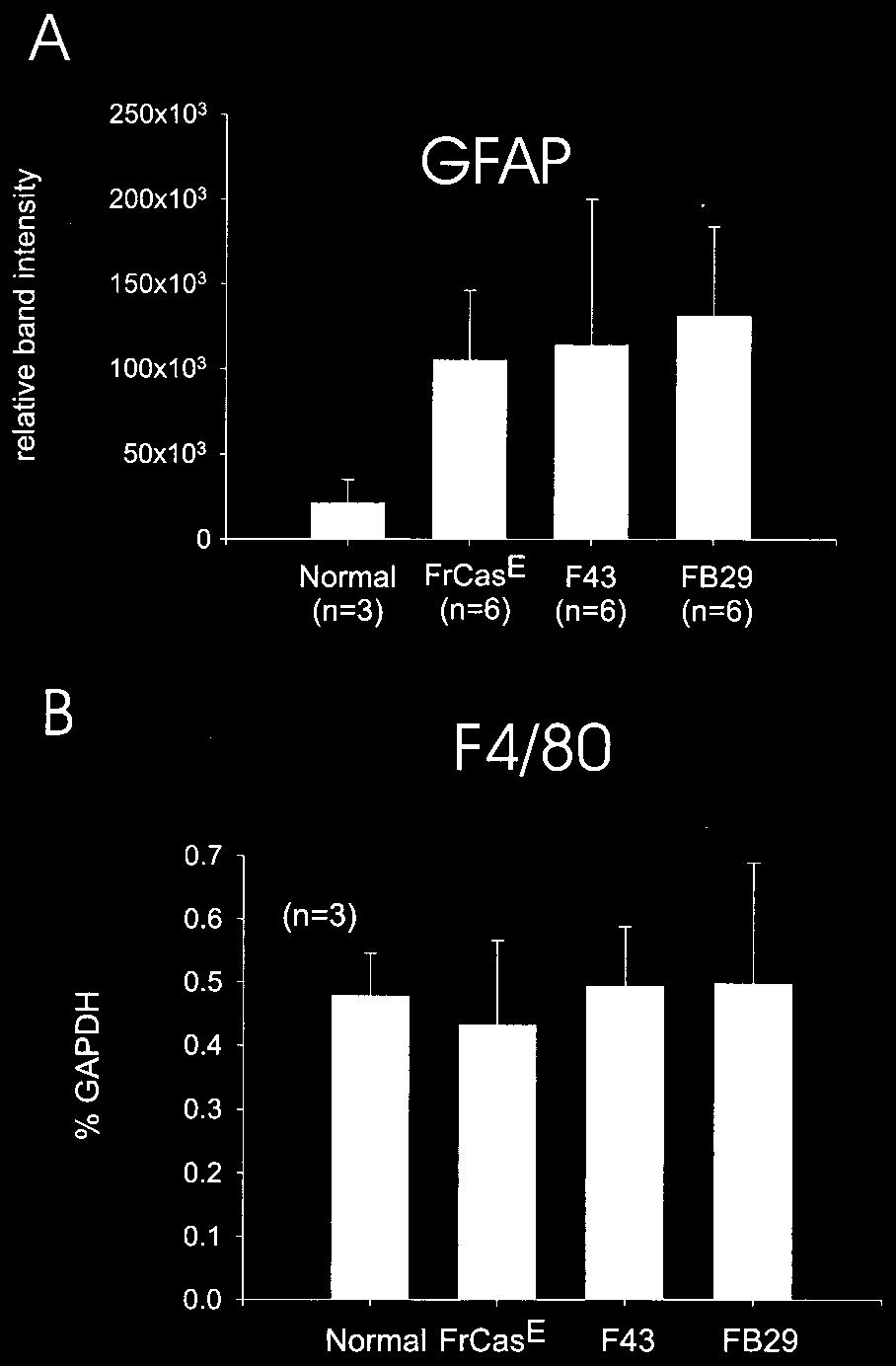 468 AŠKOVIĆ ET AL. J. VIROL. Despite the increased expression of GFAP, there was no evidence of upregulation of the microglia-specific marker F4/80 in any of the virus-infected groups (Fig. 3B).
