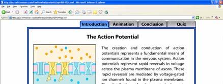 The Action Potential-Animation http://bcs.whfreeman.