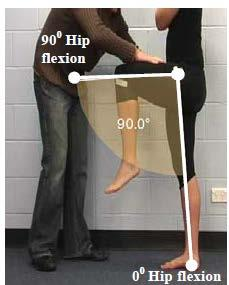 2.1.6.1.1 Primary Criteria for impaired muscle power - Lower limb Athletes are eligible if they meet ONE OR MORE of the following criteria: Primary Criterion #1 Hip flexion loss of 3 muscle grade