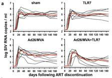 Vaccine (Ad26/MVA primeboost) alone had minimal effect on reservoir Vaccine + TLR7 agonist (Gilead) reduces