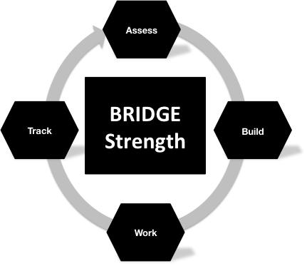 The Solution: BridgeStrength BridgeAthle+c provides