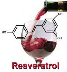 Red wine and endothelial functionresveratrol Resveratrol (3,4',5-trihydroxystilbene) Polyphenol found in skin of red grapes/red wine, peanuts skins and dark chocolate Resveratrol content per serve