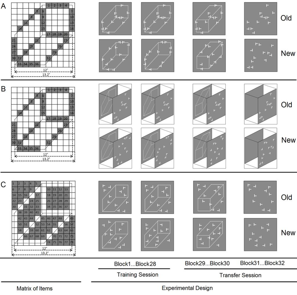 Figure 4.1 Stimulus configurations and schematic paradigm used in Experiments 8, 9 and 10. Left panel: Possible positions (gray grids) for search items in three experiments respectively.