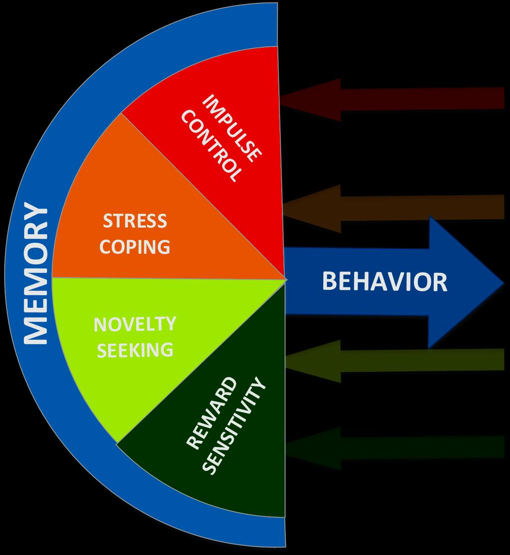 Behavior: Mediators &