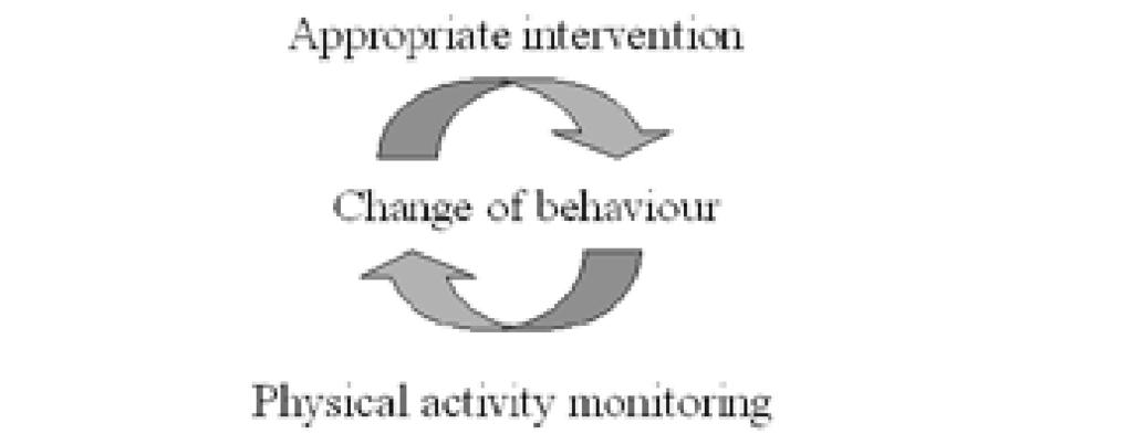 participant s current level of physical activity, and information on the participant s individual stage of motivational readiness for change (Figure 1).