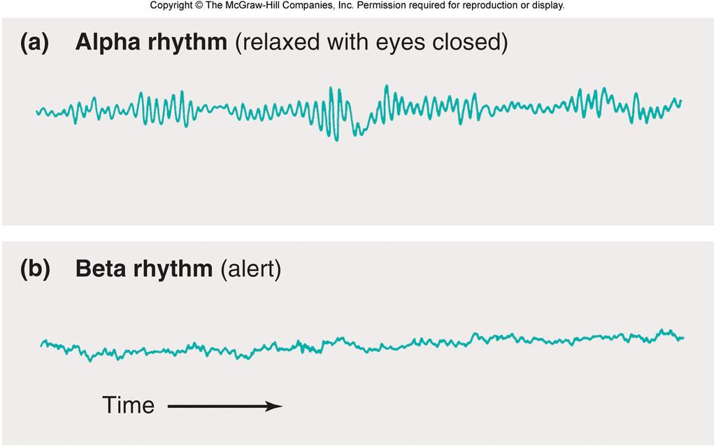 The Waking State Beta rhythm Attentive to an outside