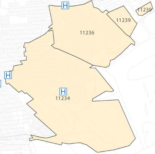 Neighborhood at a glance Population: 195,027 TBHC Service Areas: Outside the Service Area for The Brooklyn Hospital Center Age Group 85 yrs and older 290 723 1,245 808 80-84 yrs 339 778 1,214 937