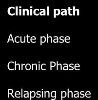 Herpes Zoster Ophthalmicus Clinical path Acute phase Chronic Phase