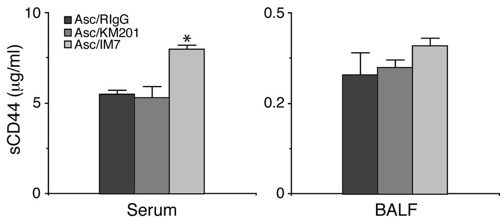 Figure 7 Soluble CD44 (scd44) in serum and BALF. Amounts of scd44 in serum and BALF were measured by ELISA as described in Methods. Data represent mean ± SEM.