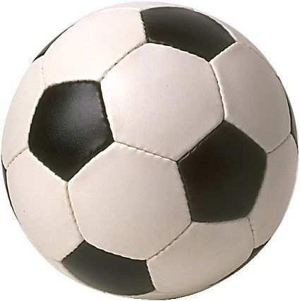 Example 1 Students are asked to compare the weights of several objects, including a football (Scheuneman, 1982).