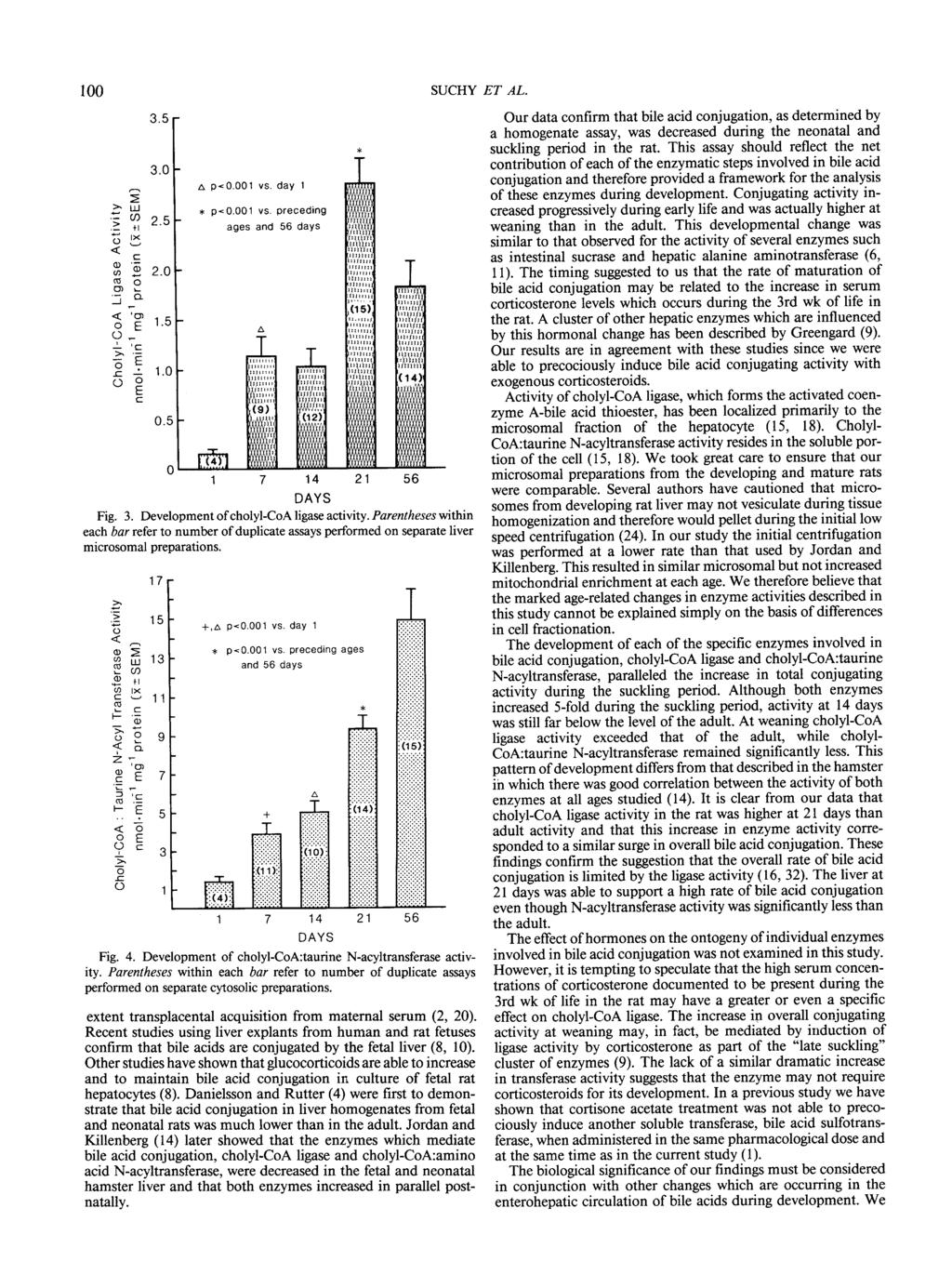 1 SUCHY A p<.1 vs. day 1 * p<.1 vs. preceding ages and 56 days 1 7 14 21 Fig. 3. Development of cholyl-coa ligase activity.