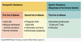 Immunology, Immune Response, and Immunological Testing Lines of Defense If the First and Second lines of defense fail, then the Third line of defense is activated.