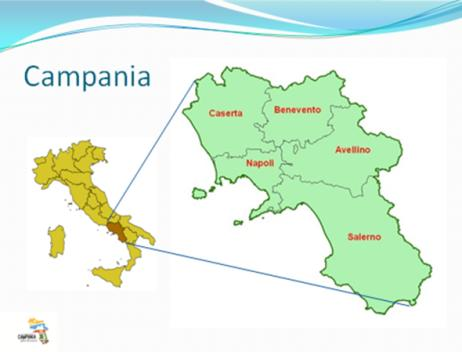 2 in 2002) Mortality rate National Average: 10 Mortality rate in Campania