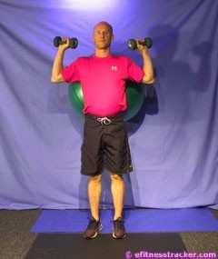 3. BALL DUMBBELL SQUATS Execution: Primary Muscle Group: Quadriceps femoris, Gluteus Muscle Groups Worked in This Exercise: Thigh Flexors, Glutes Preparation: Place a ball between your back and the