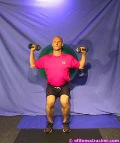 Hold the dumbbells up in your hands next to your shoulders. Breathing: Inhale when sliding your back (and the ball) down the wall; exhale when rising to standing position.