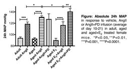 045 The Enhanced Pressor Response to AngII in Aged Females is Attenuated by Estrogen Replacement via an AT 2R-mediated Mechanism PrimaryAuthor.