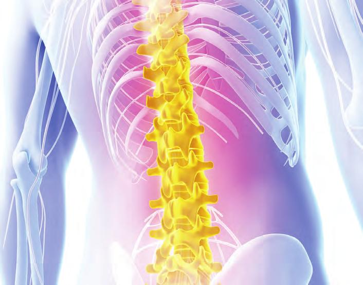 Treatment of the Lumbar Spine New York City Provided by HOSPITAL FOR