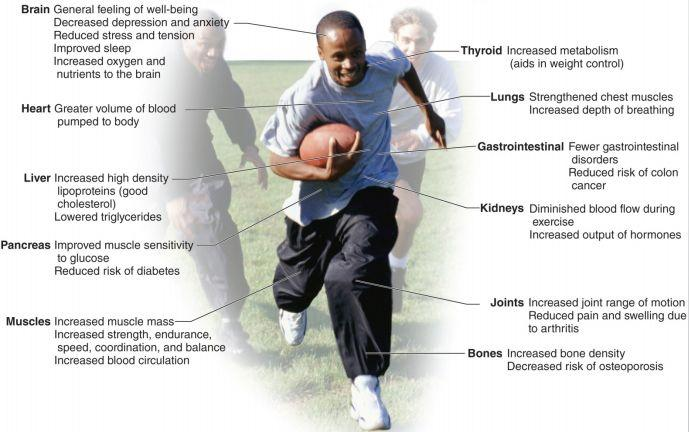 Physical Activity General Guidelines for Physical Activity The American College of Sports Medicine (ACSM) issued