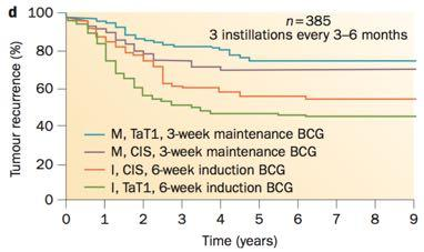 AUA, EAU, ICUD, NCCN guidelines on use of BCG are all slightly different