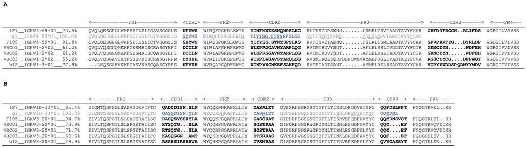 blot, as the trimers forms various mab complexes. (A) Summary of effects of each point mutant on mab binding. (B) Actual BN-PAGE Western blots showing mab binding to parent, D368R and R469S SOS-VLPs.