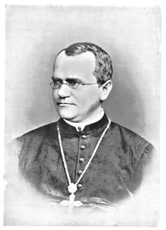 Gregor Mendel (1822-1884) German monk born in 1822 Lived in what is now the Czech Republic Tended the garden at his monastery,