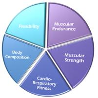 1. PHYSICAL FITNESS AND HEALTH Healthy: to be free from illness, injury or pain.