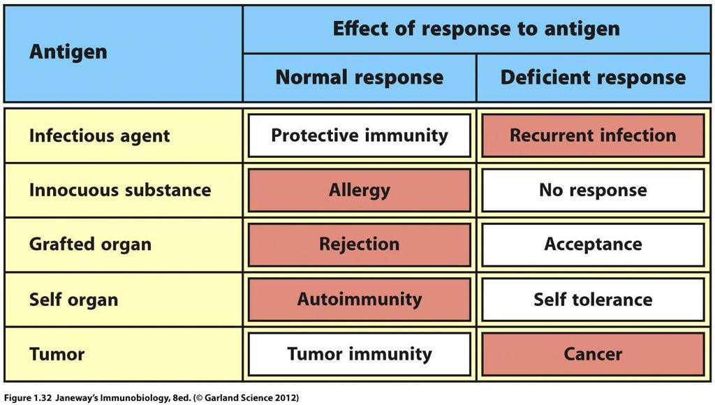 Immune responses can