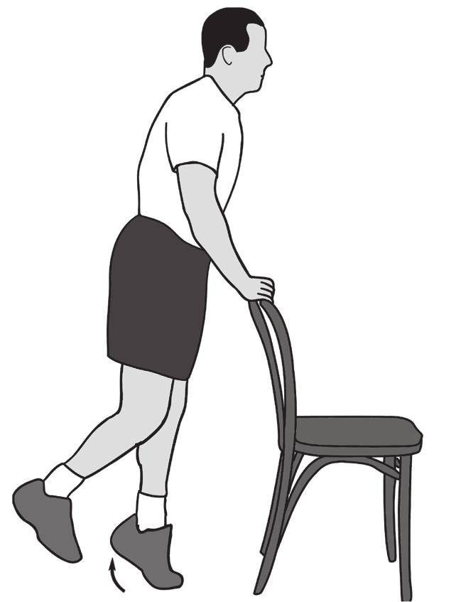 6. Calf Raises 2 sets of 10 6 to 7 Main muscles worked: Gastrocnemius-soleus complex You should feel this exercise in your calf Equipment needed: Chair for support Stand with your weight evenly