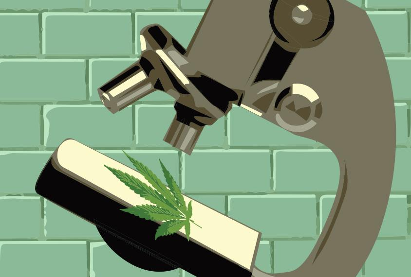 Major Questions in Human Research Is cannabis treating core or associated symptom?