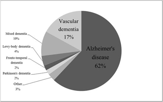 Causes of Dementia Alzheimer s Disease (AD) The most common cause of dementia 5.