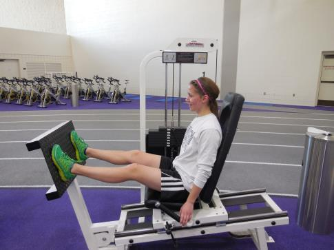 Place feet on platform starting in a flexed knee position.