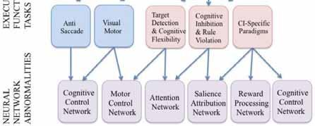 Moreover, the majority of these network abnormalities appear as dimensional. Several EF tasks reveal abnormal activation in the same neural network. Adapted from findings in [13, 41-45, 47-48, 54-57].
