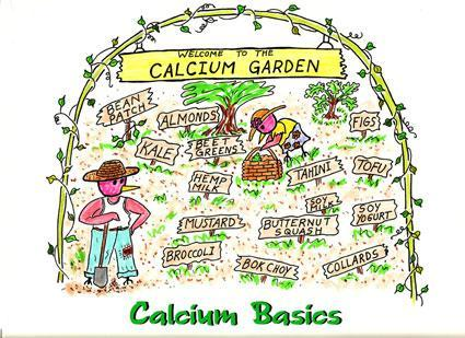 Eat a VARIETY of healthful foods Pay particular attention to: CALCIUM Dairy foods, dry