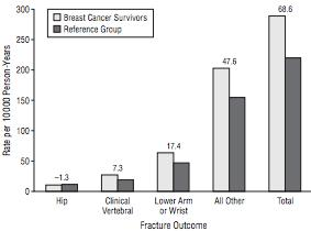 Postmenopausal Breast Cancer Women at Increased Risk For Clinical Fractures Breast Cancer Survivors Reference Group 68.