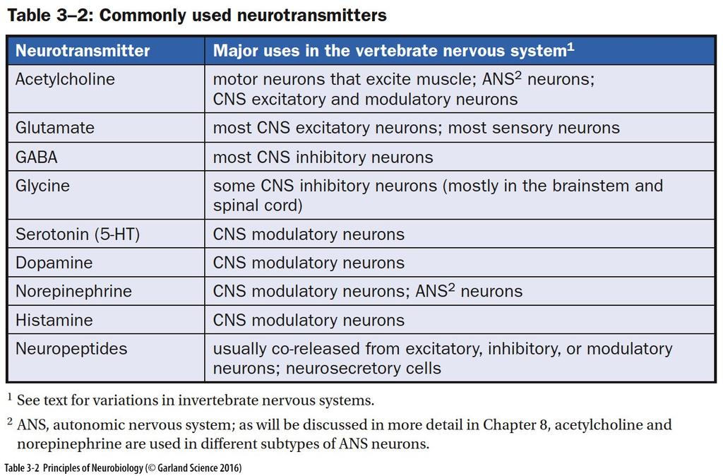 Classification of Neurotransmitters by Chemistry and Function Acetylcholine (ACh) Amino Acids (Glu,