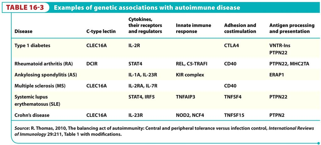 Do we know what genetic differences lead to predisposition to autoimmune disease?