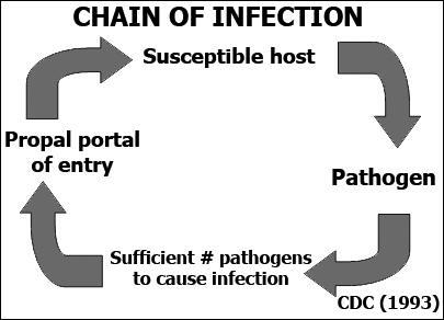 Chain of infection. (From U.S. Department of Health and Human Services, Centers for Disease Control and Prevention: Practical Infection Control in the Dental Office. Washington, DC, U.S. Department of Health and Human Services, 1993.