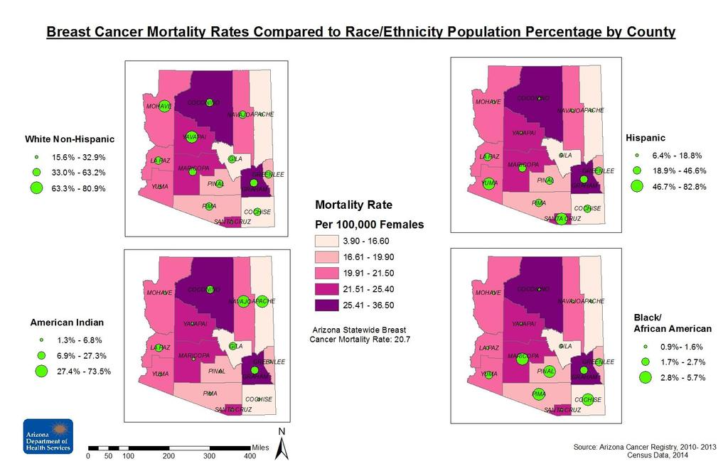 This map compares breast cancer mortality rates with Race/Ethnicity demographic information taken from the 2014 Census.