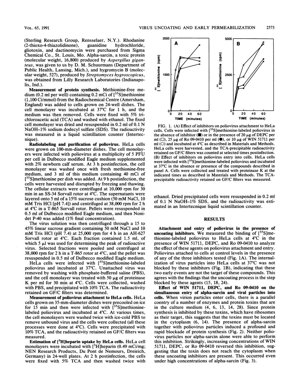 VOL. 65, 1991 VIRUS UNCOATING AND ARLY PRMABILIZATION 2573 (Sterling Research Group, Rensselaer, N.Y.).