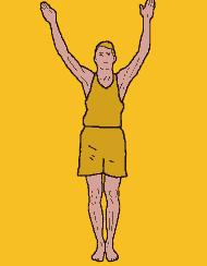 WALL SERIES WINDMILL ARMS REPS: 3-6 SET UP: Stand with your back against the wall and your heels one foot length in