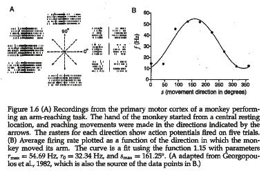 Direction-of-reach tuning curve for a neuron in primary motor cortex (area M1) of the monkey. From Dayan, Peter, and L. F. Abbott.