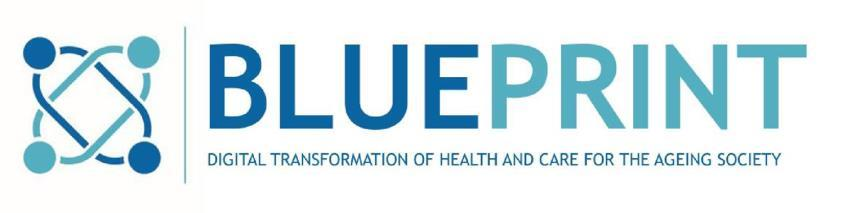 THE BLUEPRINT STRATEGY The European Innovation Partnership on Active and Healthy Ageing (EIP on AHA), has engaged with several multi-stakeholders organisations called Champions in the development of