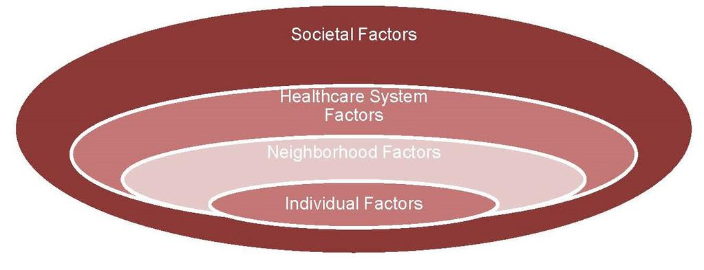 health status; or a particular health outcome. 5 The factors influencing health disparities are multilayered and complex.