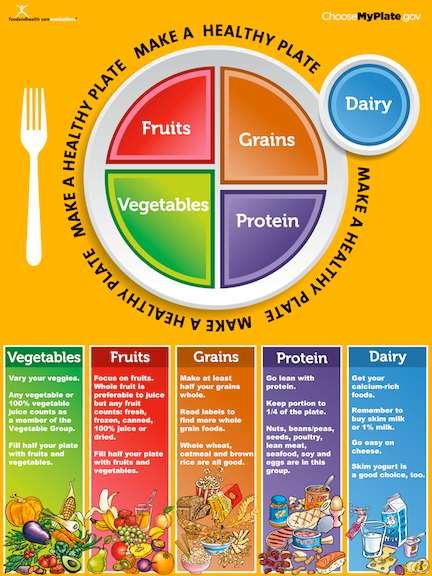 Nutrition Great meals look and taste good and