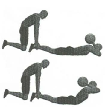 thighs  Ball positions: extended from chest, overhead