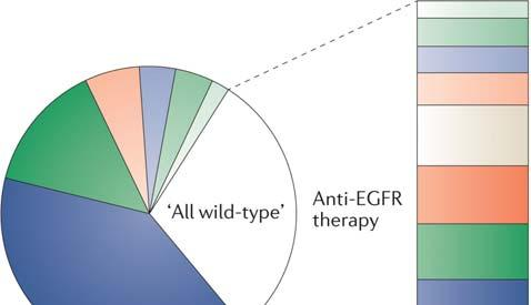 GENOMIC LANDSCAPE BEFORE AND AFTER ANTI-EGFR THERAPY IN ADVANCED CRC ANTI-EGFR IN ADVANCED CRC The population of patients with no MAPK-pathway