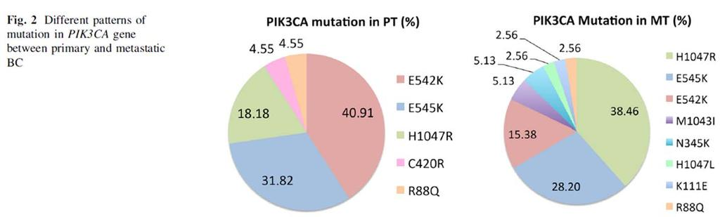 clinical outcome. Only EGFR mutations have not been identified in pretreatment lesions.