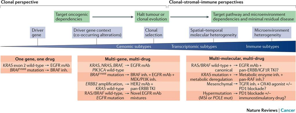 EVOLUTION OF PRECISION MEDICINE PARADIGMS IN COLORECTAL CANCER.