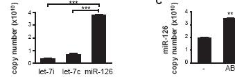 mir-126 is enriched in AB and can